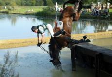 Я не я и лошадь не моя - статья Любови Богдановой